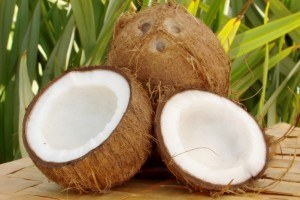 coconuts used to make coconut oil