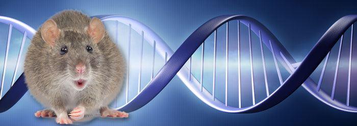 gene_control_wide
