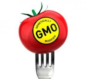 gmo-labeling_1-300x262