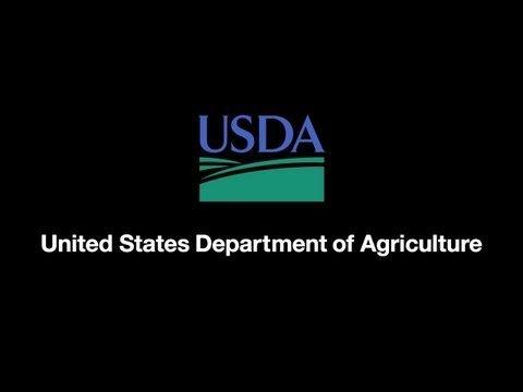 Unapproved GMO Wheat Found In Oregon