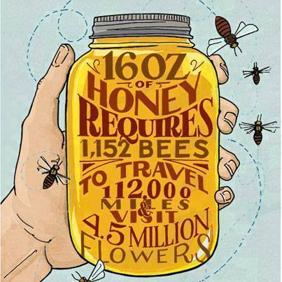 bees-graphic