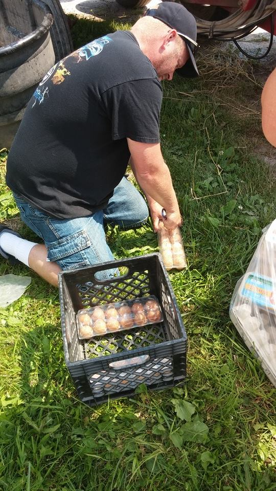 destroying-eggs