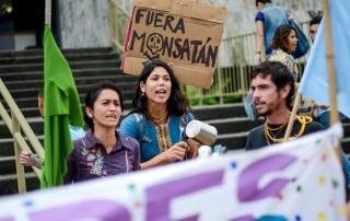 GMO-Constitutional-Chamber-Costa-Rica