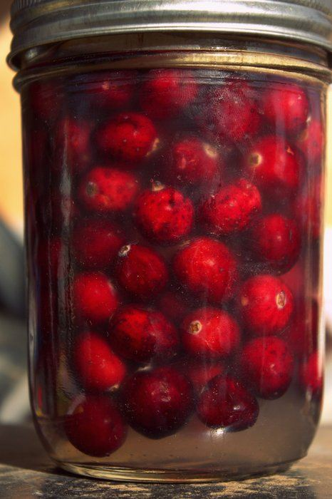 Fermented Whole Cranberries. Photo by Shannon Stonger.