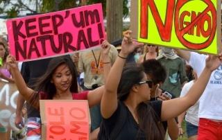 maui-gmo-protest