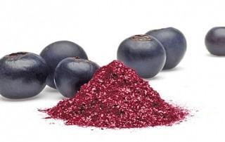 blueberry-powder