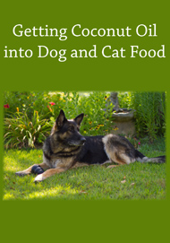 getting_coconut_oil_into_dog_and_cat_food