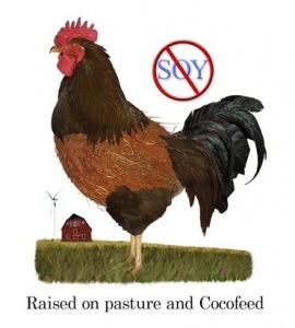 pasturedpoultrymed 270x300 More Hidden Soy to Enter the Food Chain: Factory farmed Fish Feed