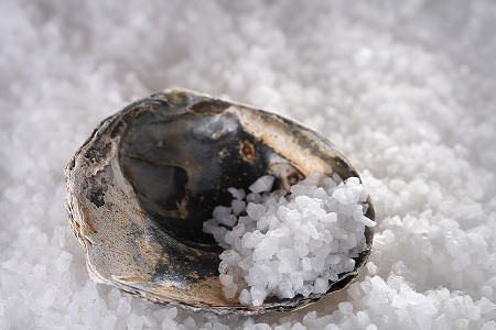 sea_salt_in_sea_shell