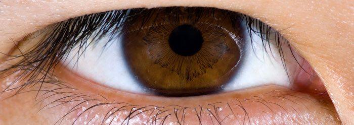 brown_eye_wide