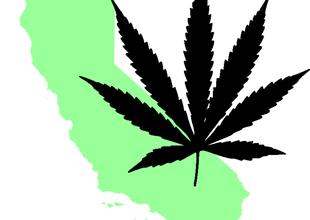 californiamarijuana