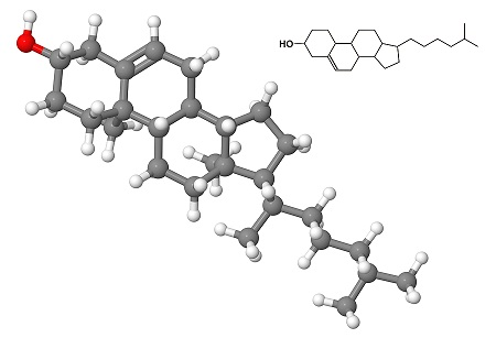 Cholesterol_Molecule
