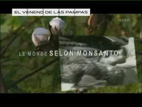 Over 50% of Argentina's Cultivated Land is GMO Soy, with Serious Health Effects