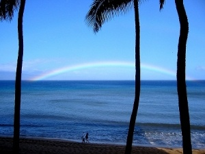photo of couple walking on beach with coconut palms and rainbow