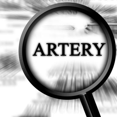 Statin Drugs Found To Accelerate Arterial Calcification