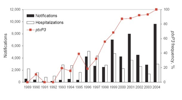 the pertussis outbreak essay In the 1990s bordetella pertussis caused an estimated 20 to 40 million cases of pertussis worldwide and 200 000 to 400 000 deaths each year 1 although improved vaccination coverage has decreased the incidence of pertussis dramatically over the last decade, many developed countries have recently experienced a resurgence of the disease among.