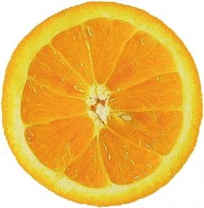 orange-slice3