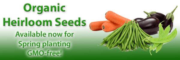 organic-heirloom-seeds