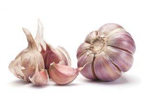 garlic-300x199