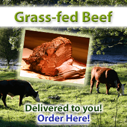 grass-fed-beef