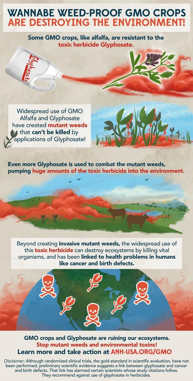 demon-weeds-infographic
