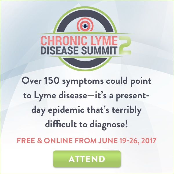 LYME17_banner_attend_600x600