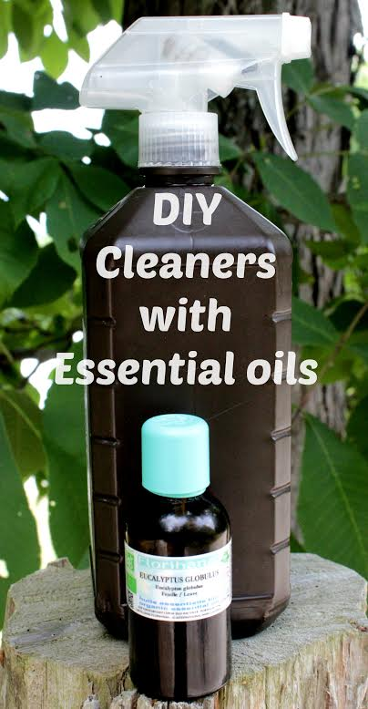 Non-Toxic Household Cleaner Recipes You can Make at Home with ...
