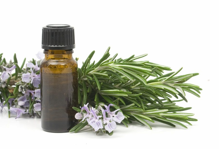 Fresh blossoming rosemary branch and a bottle of essential oil u