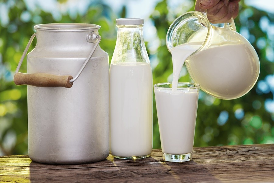 Big Dairy Continues War Against Farmers and Raw Milk