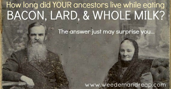 http://healthimpactnews.com/2014/how-long-did-your-ancestors-live-while-eating-bacon-lard-whole-milk/