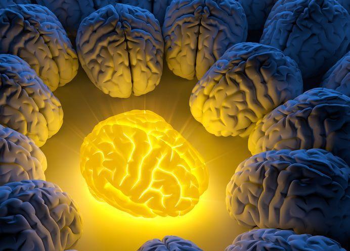 brain_healing_turmerones_turmeric