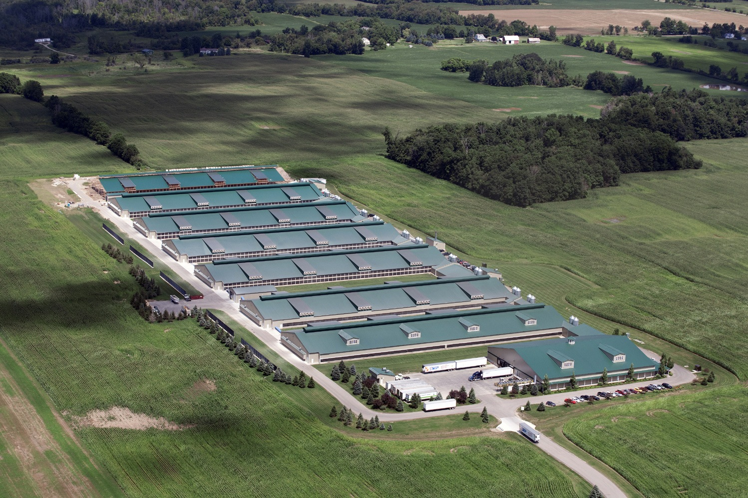 "organic farming or factory farming Horizon ""organic"" factory farm accused of improprieties the cornucopia institute accused the regulatory agency of abdicating its enforcement responsibilities."