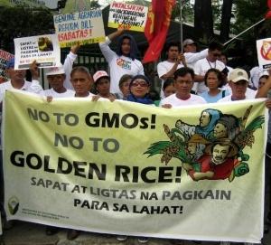 Filipinos-oppose-GMO-Rice