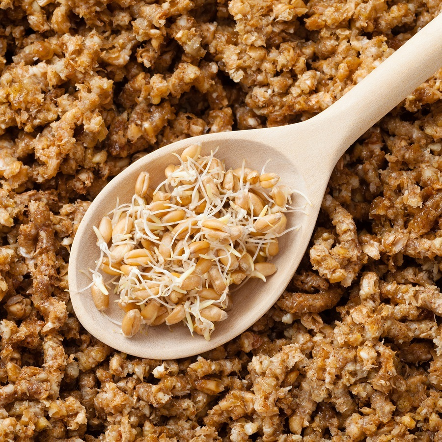 wheat sprouts in wooden spoon and ground sprouted grains background nutrition healthy food