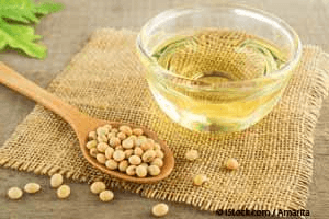 The Major Role Soybean Oil Plays in Obesity and Diabetes