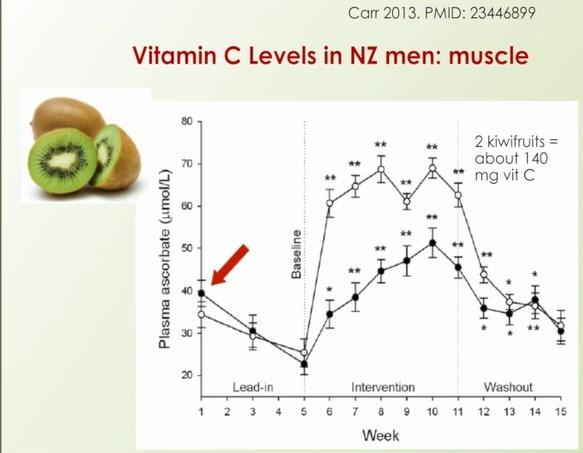 Vitamin C in muscle
