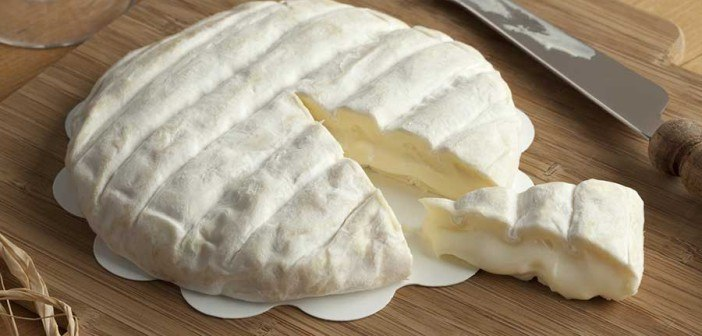 cheese-italian-web-702x336