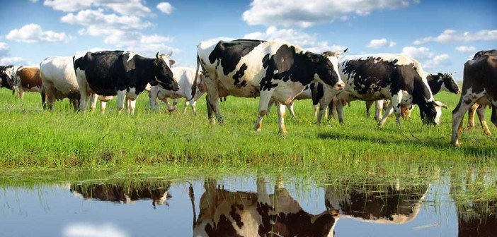 New Congressional Bills Aim to Protect Consumer Access to Raw Milk