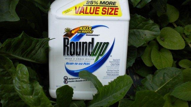 Roundup-008-644x363