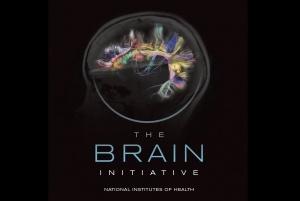 brain-initiative-NIH-fb