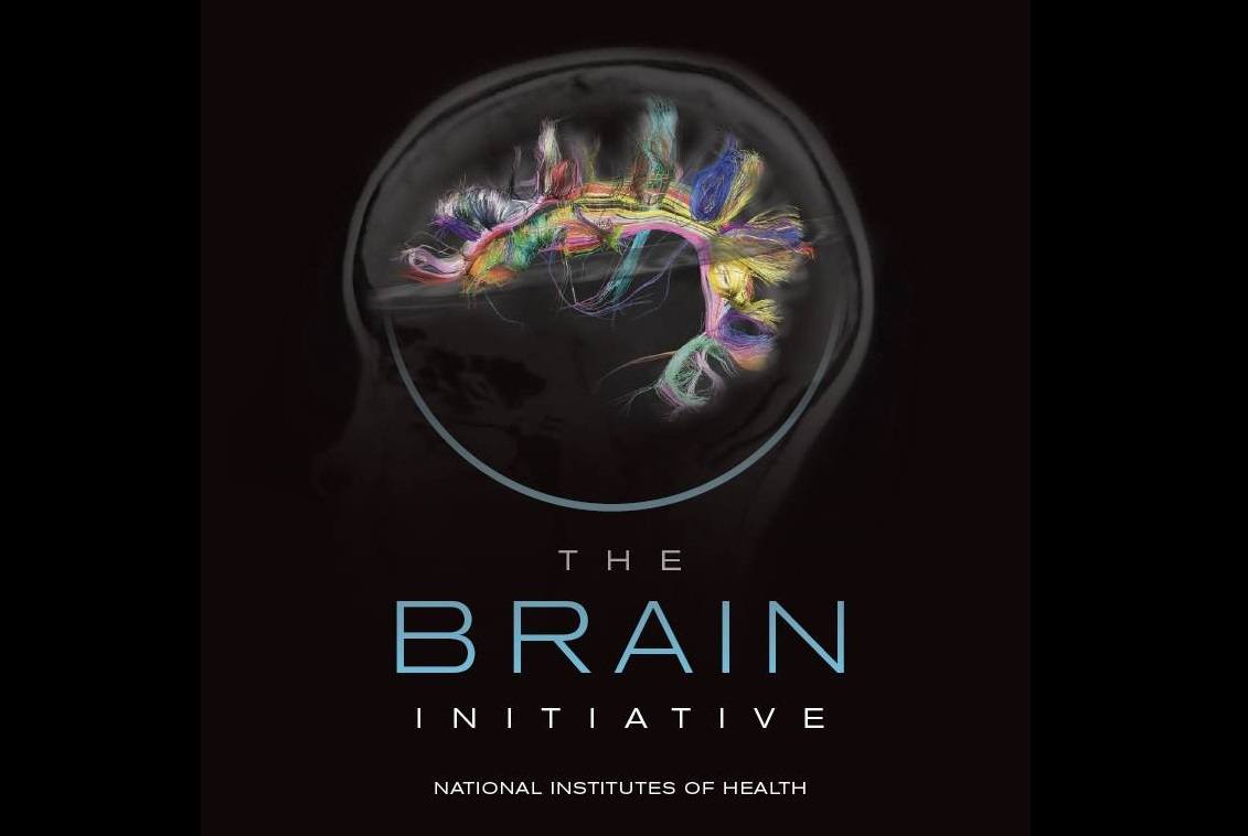 brain-initiative-NIH-fb