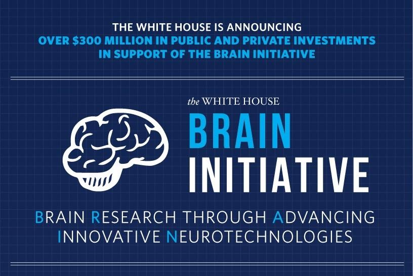 brain_infographic-sm