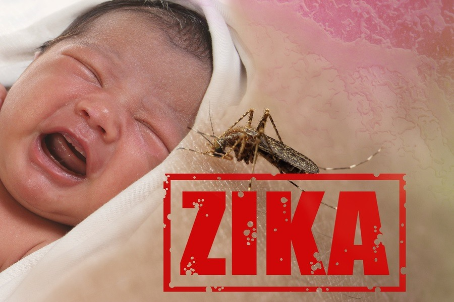 Health issue concept image of crying baby bitten by Aedes Aegypti mosquito as Zika Virus carrier