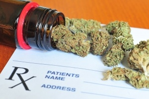 Photo of dry medical marijuana buds  with shallow depth of field