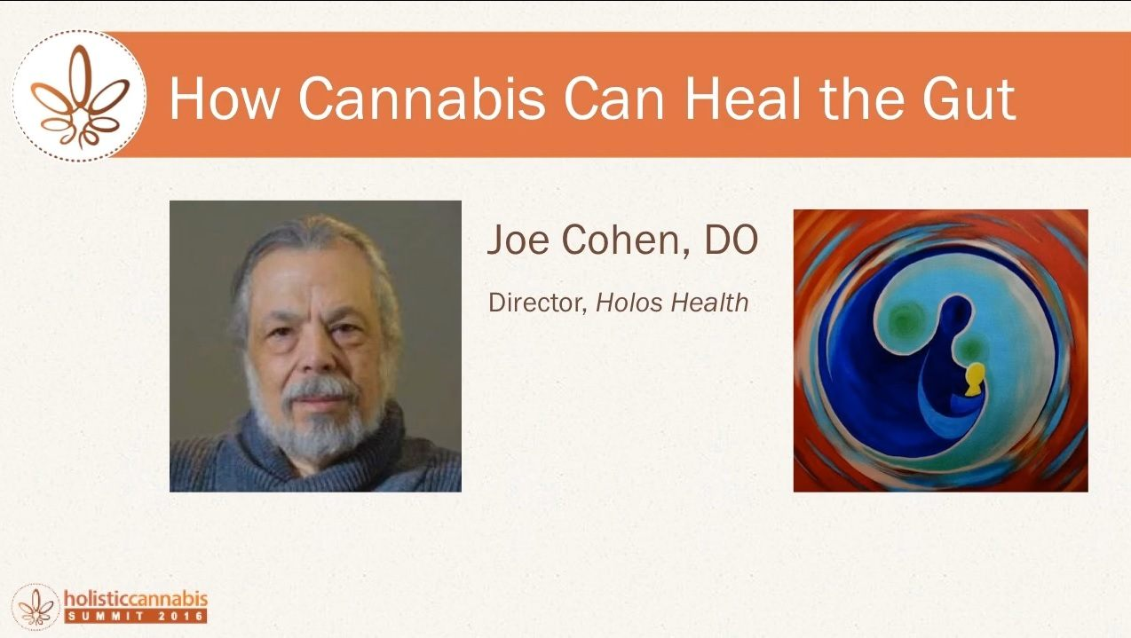 Joe-Cohen-Cannabis