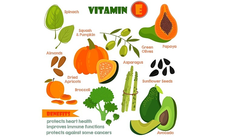 Vitamins and Minerals foods Illustrator set 13.Vector set of vitamin rich foods. Vitamin E-spinach dried apricots almondssquash and pumpkinbroccoli green olives papaya sunflower seeds avocados and asparagus