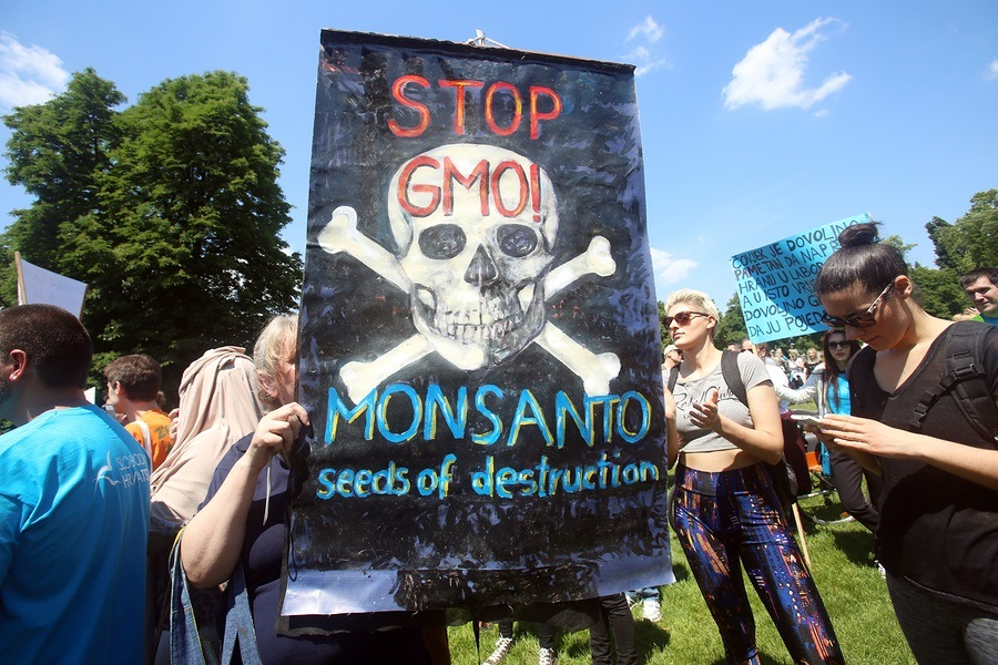 ZAGREB CROATIA - MAY 21 2016 : Protesters march with signs raised through Zagreb in a protest against US biotechnology group Monsanto and against TTIP agreement.