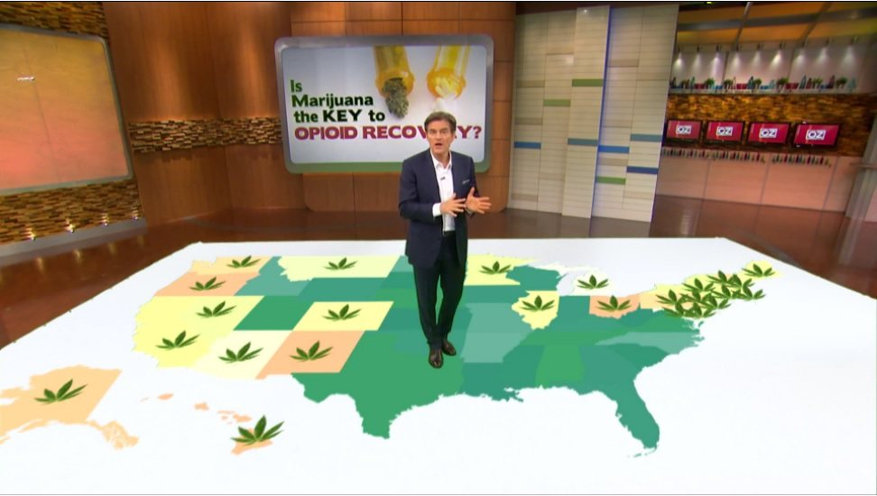 Dr.Oz.Opioid.Marijuana