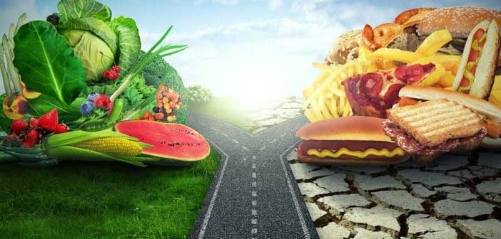 food-highway-split-web-702x336