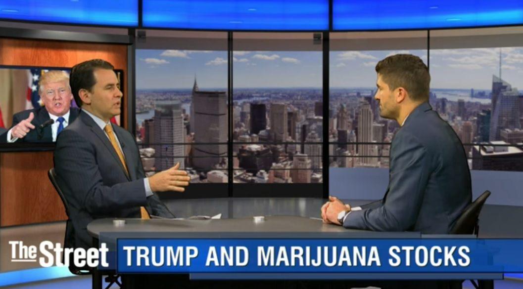Trump-Marijuana-Stocks